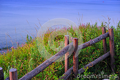 Wooden fence on the grass