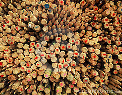 Wooden fence poles