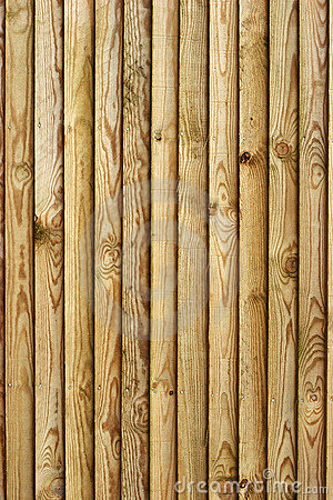 Wooden fence - portrait