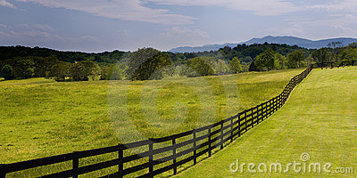 Wooden fence running through green field