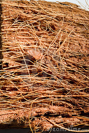 Free Wooden Fibers Royalty Free Stock Photos - 3002478