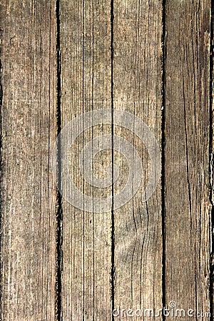 The wooden floor
