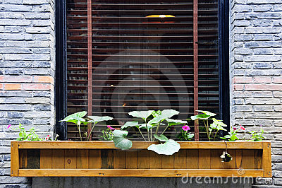Wooden flower box in window