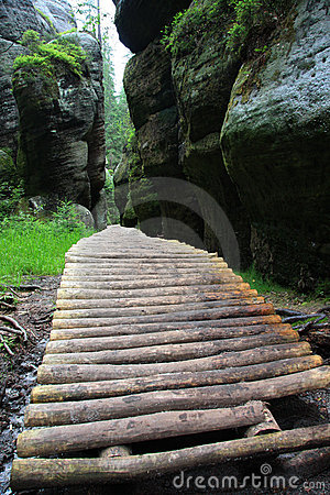 Wooden foot path