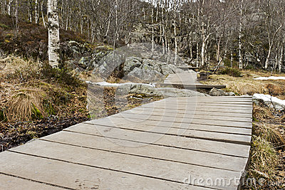 Wooden foot path in rural landscape