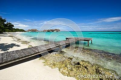 Wooden footbridge on beach