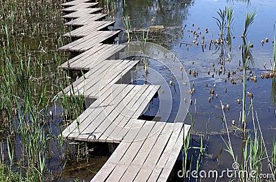 Wooden footbridge over lake