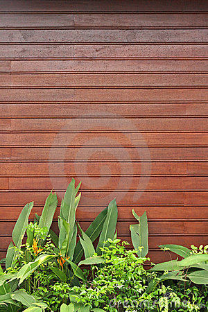Wooden Forefront with Plants