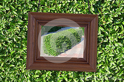 Wooden frame on the background of foliage