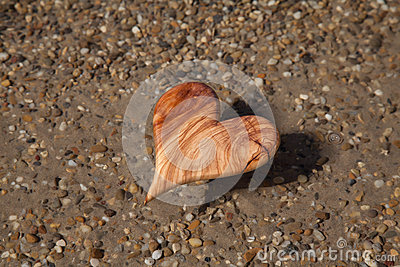 Wooden heart shape in the nature for greeting card.