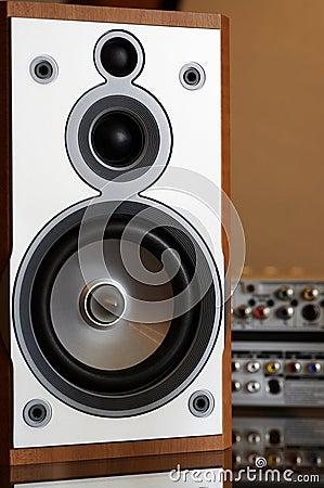 Free Wooden Hi-fi Loudspeaker Stock Photo - 4609650