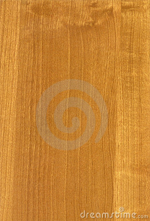 Free Wooden HQ Light Alder Texture Stock Photography - 3497832