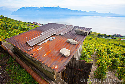 Wooden Hut In Lavaux, Switzerland