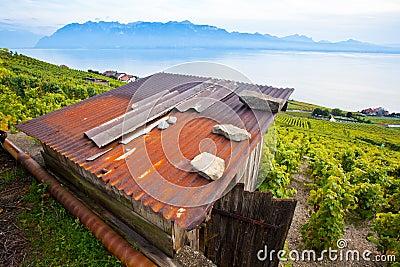 Wooden Hut In Lavaux, Switzerland