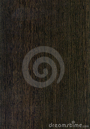 Wooden Live Оak texture