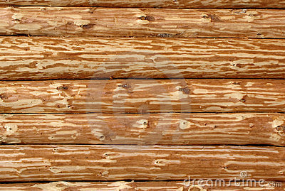 Wooden log wall