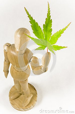Wooden Man and Maple Leaf