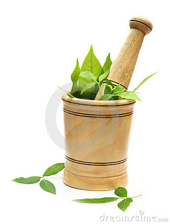 Free Wooden Mortar-pestle And Herbs Stock Photo - 17056530