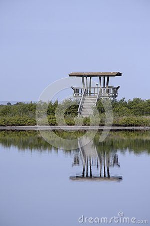 Wooden Observation Tower Reflecting in Water