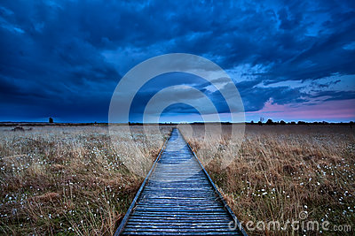 Wooden path through swamp