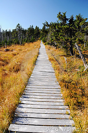Wooden Path Walkway, Czech Republic Stock Photography - Image: 21616632