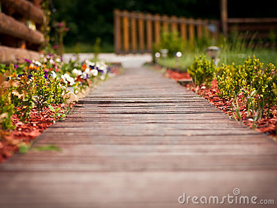 Wooden pathway through garden