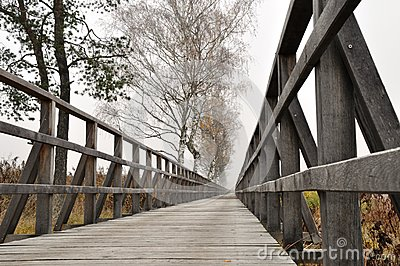Wooden pathway straight forward