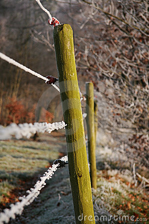 Wooden pole and barbwire