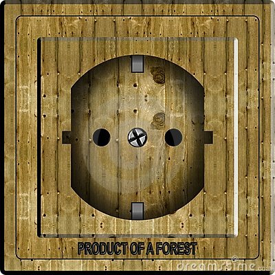 Wooden power socket