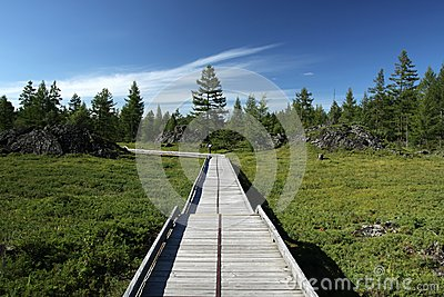 A Wooden Road Royalty Free Stock Images - Image: 26488049