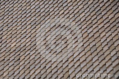 Wooden roof shingle