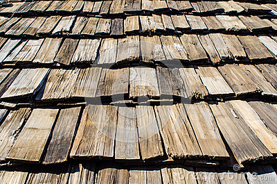Wooden roof top
