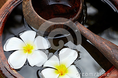 Wooden scoop and flowers