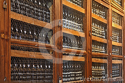 Wooden shelves with bottles of wine Editorial Image