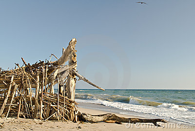 Wooden shoreline shelter - Beach Series