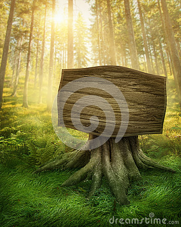 Free Wooden Sign In The Forest Stock Photo - 36032980