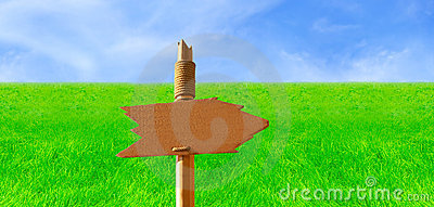 Wooden Signpost in Green Field