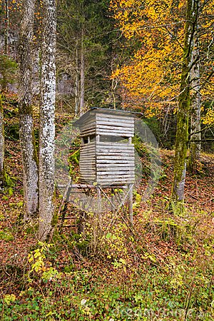 Free Wooden Stable Hunting Blind Hunting Hide In A Forest Royalty Free Stock Image - 108955866