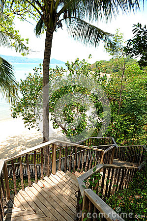Wooden stairs on beach