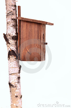 Wooden starling-house on a birch trunk isolated