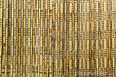Wooden Sticks Texture
