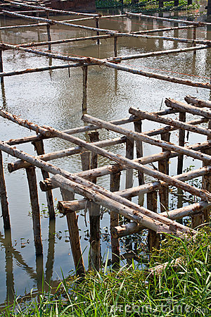 Wooden Structure Bridge