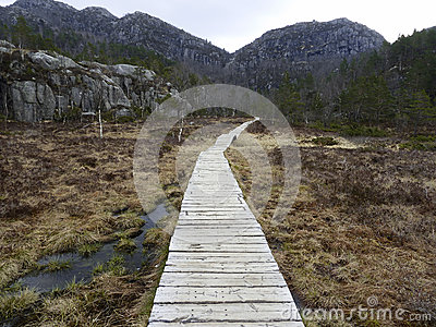 Wooden track in rural landscape
