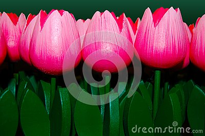 Wooden Tulips pink