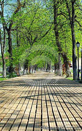 Wooden walkway in a park