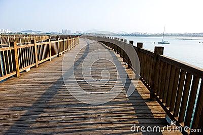 Wooden walkway on seaside
