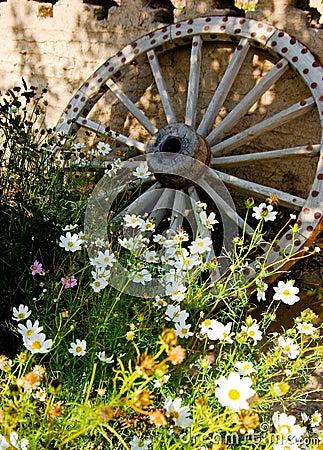 Free Wooden Wheel Royalty Free Stock Image - 6636646