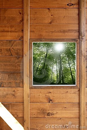 Wooden window jungle green forest view