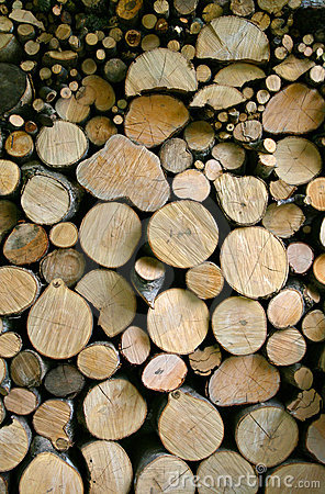 Free Woodpile Stock Photography - 14204252