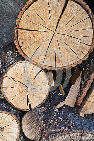 Free Woodpile. Royalty Free Stock Photography - 45227207